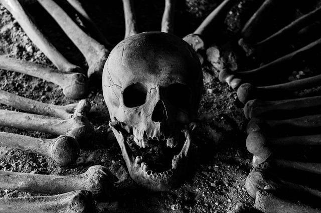 lebka a kosti